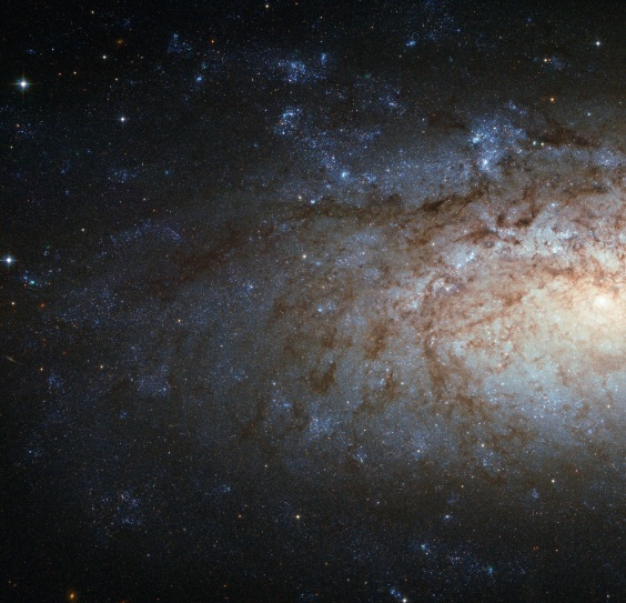 HUBBLE GETS DETAILED WITH NGC 3621