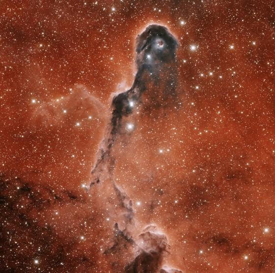 IC 1396A ELEPHANT TRUNK NEBULA